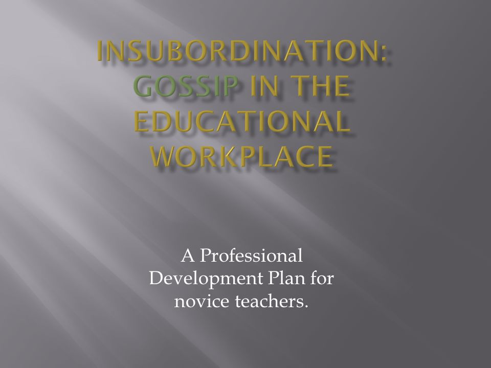  What is our Professional Development Plan.