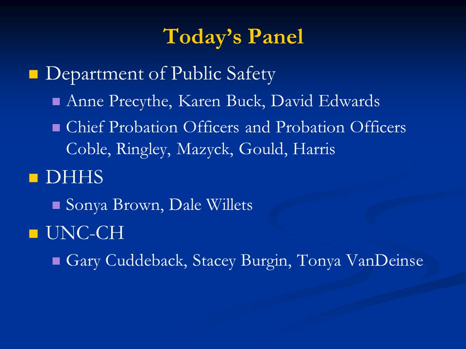 Today's Panel Department of Public Safety Anne Precythe, Karen Buck, David Edwards Chief Probation Officers and Probation Officers Coble, Ringley, Maz