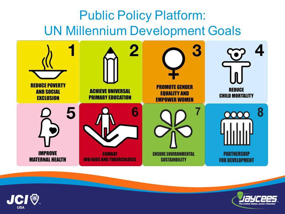 Public Policy Platform: UN Millennium Development Goals