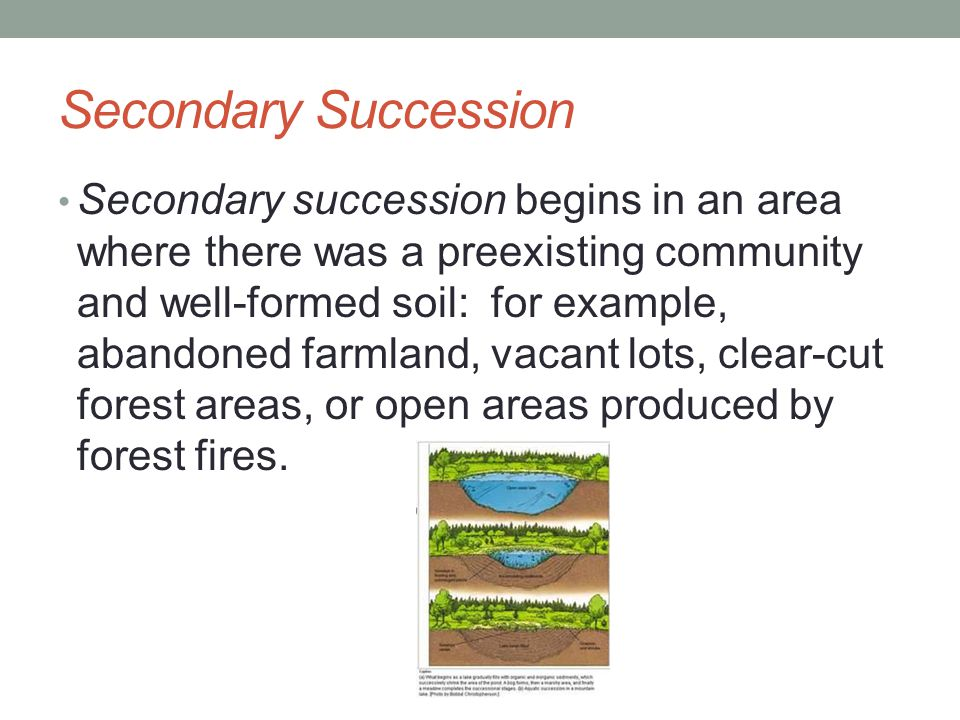 Secondary Succession Secondary succession begins in an area where there was a preexisting community and well-formed soil: for example, abandoned farml