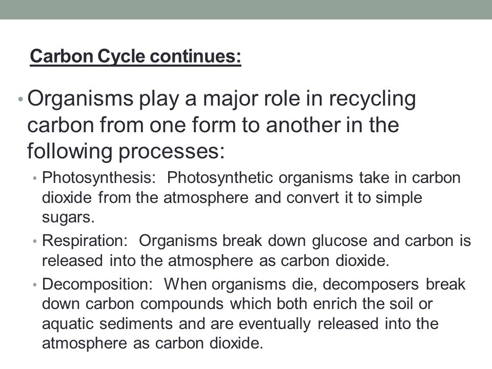 Carbon Cycle continues: Organisms play a major role in recycling carbon from one form to another in the following processes: Photosynthesis: Photosynt