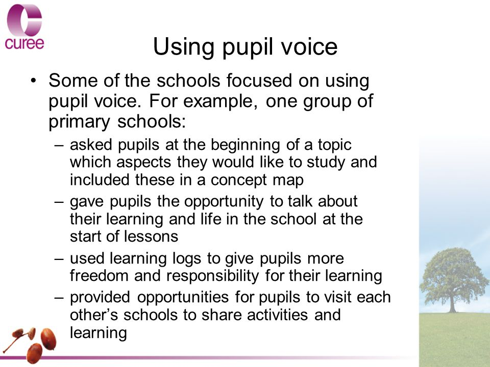 Using pupil voice Some of the schools focused on using pupil voice.