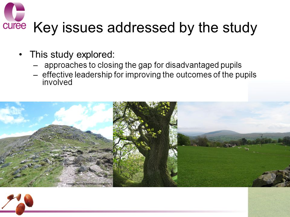 Key elements of the study The schools involved trialled a range of strategies and measured their impact on pupil learning