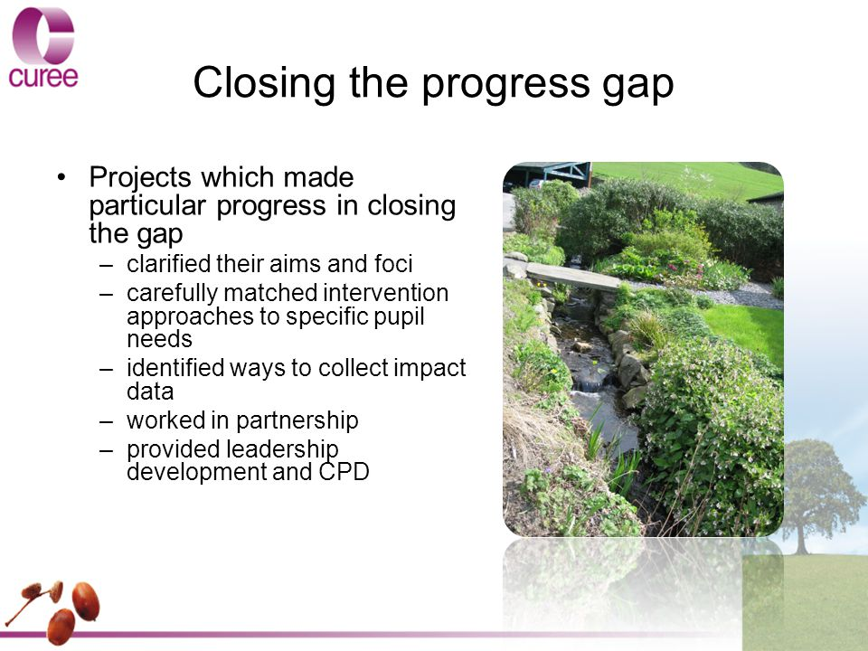 Closing the progress gap Projects which made particular progress in closing the gap –clarified their aims and foci –carefully matched intervention approaches to specific pupil needs –identified ways to collect impact data –worked in partnership –provided leadership development and CPD