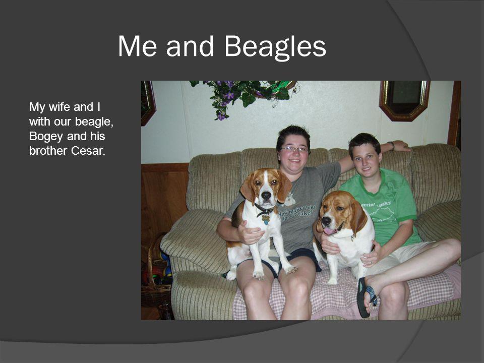 Me and Beagles Brenna