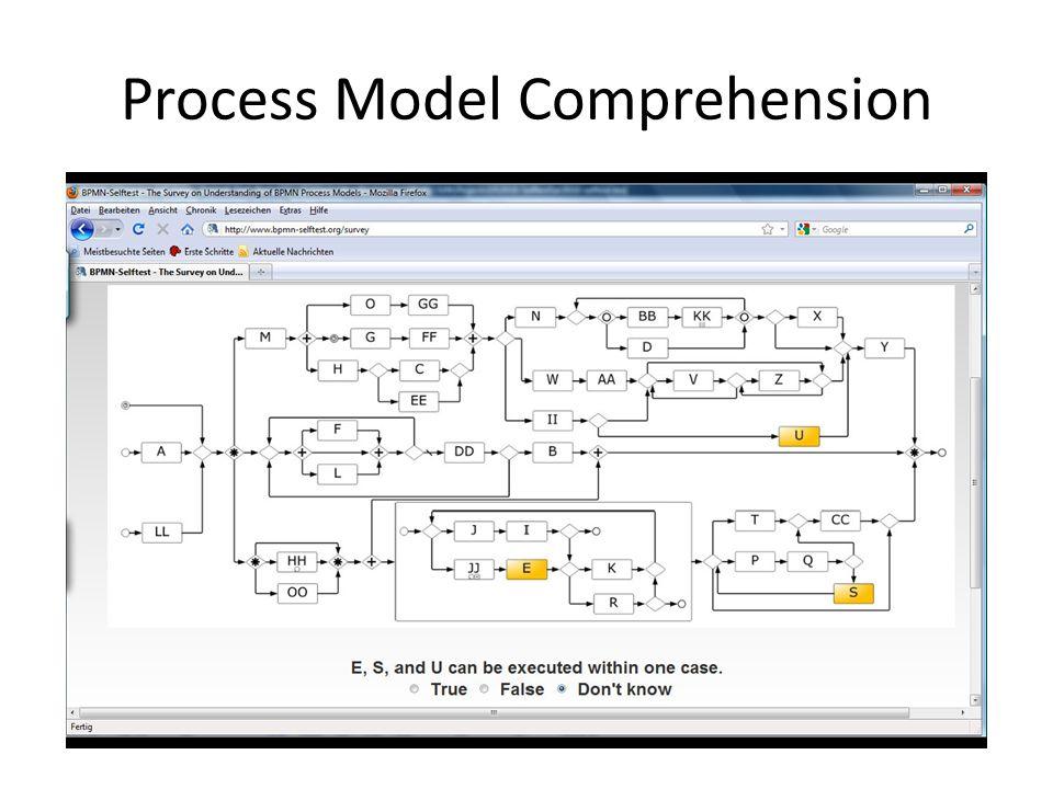 Process Model Comprehension