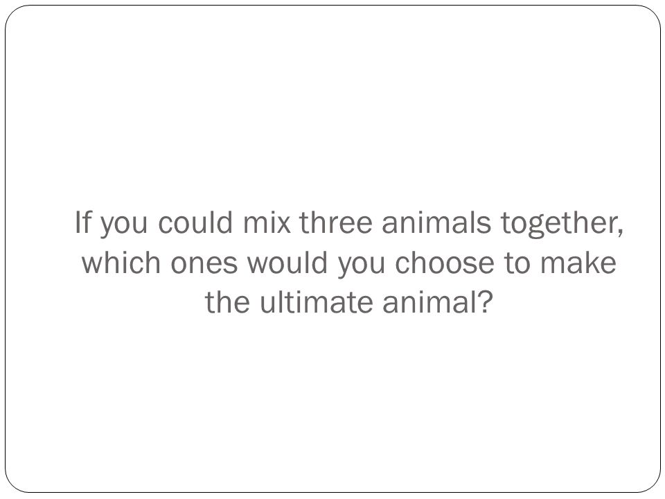 If you could mix three animals together, which ones would you choose to make the ultimate animal?