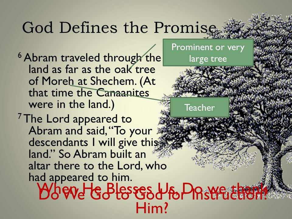 God Defines the Promise 6 Abram traveled through the land as far as the oak tree of Moreh at Shechem.