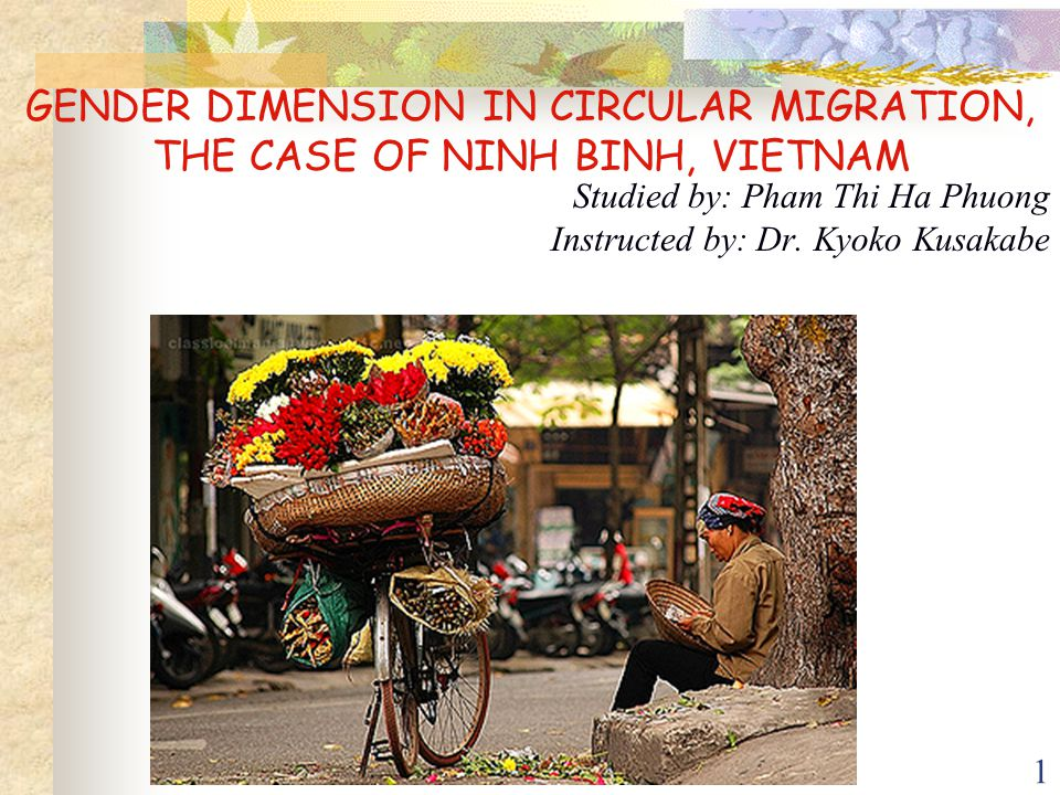 1 GENDER DIMENSION IN CIRCULAR MIGRATION, THE CASE OF NINH BINH, VIETNAM Studied by: Pham Thi Ha Phuong Instructed by: Dr. Kyoko Kusakabe