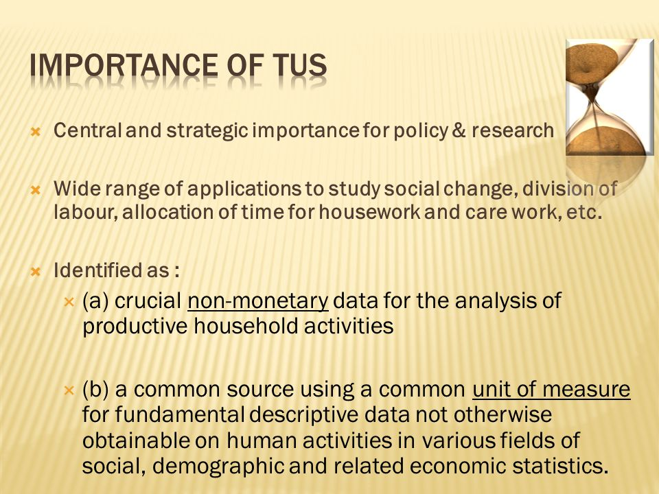  Central and strategic importance for policy & research  Wide range of applications to study social change, division of labour, allocation of time for housework and care work, etc.