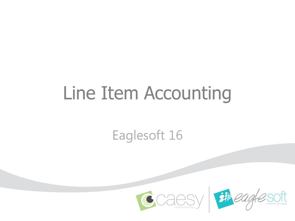 Line Item Accounting : enables the user to apply a payment directly to a specific line item.