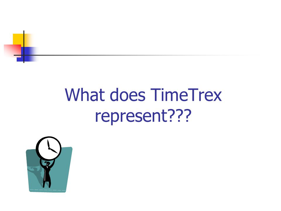 What does TimeTrex represent