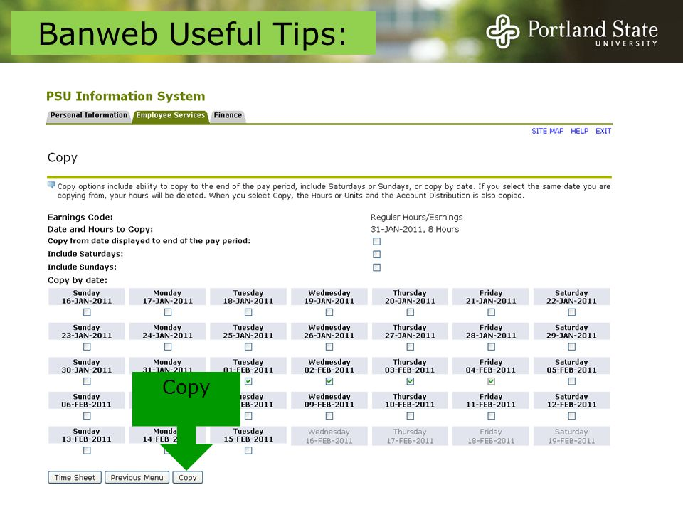 Copy Banweb Useful Tips: