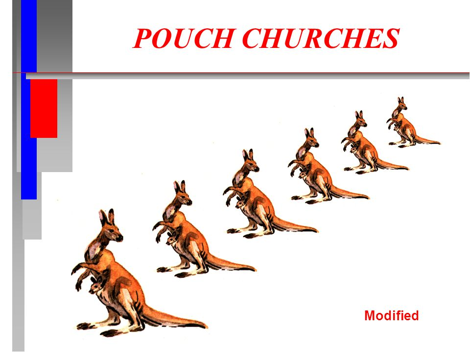 POUCH CHURCHES Modified