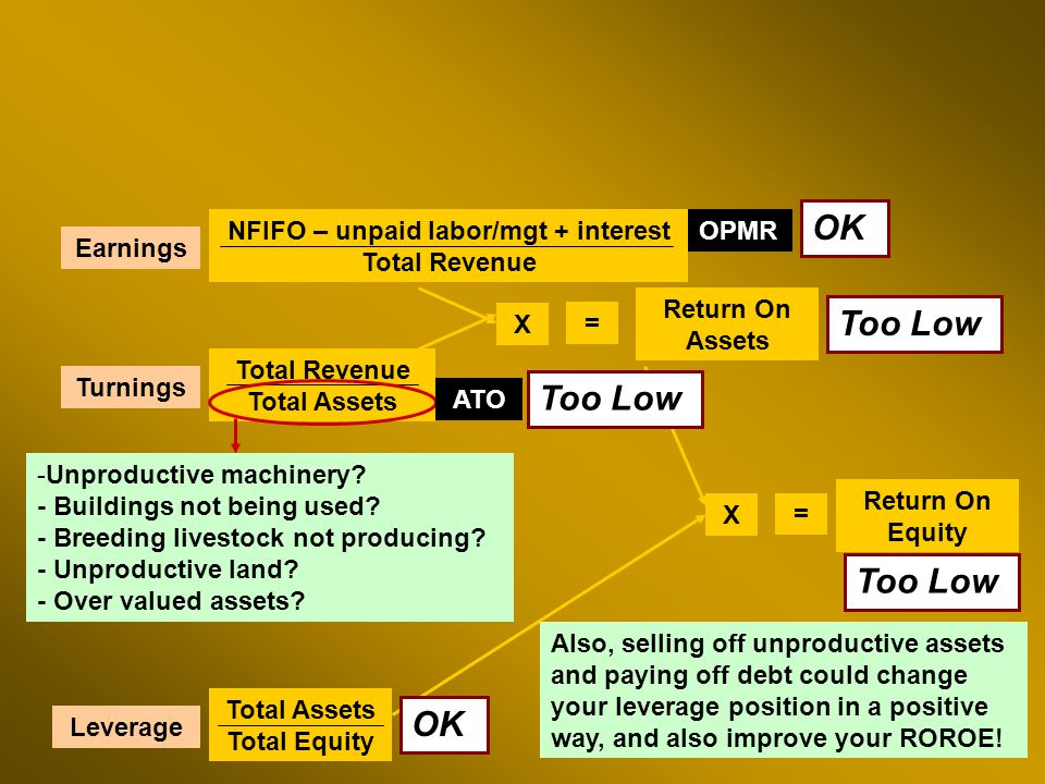 NFIFO – unpaid labor/mgt + interest Total Revenue Total Revenue Total Assets Return On Assets Total Assets Total Equity Return On Equity X = X = Earnings Turnings Leverage OPMR ATO Too Low OK Too Low OK Too Low -Unproductive machinery.