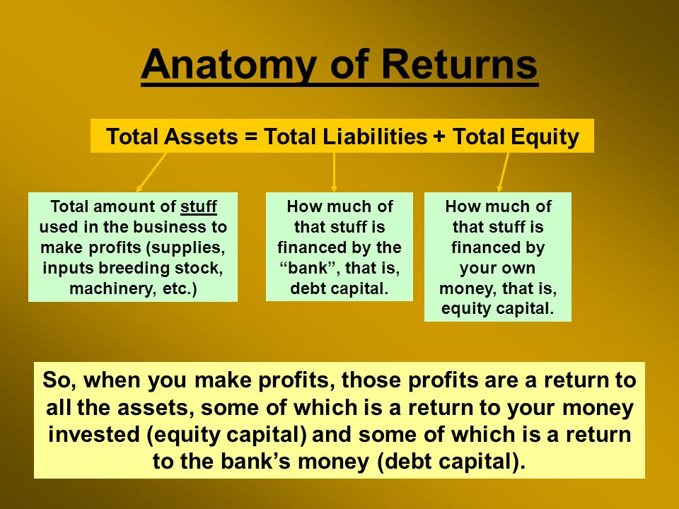 Anatomy of Returns Total Assets = Total Liabilities + Total Equity Total amount of stuff used in the business to make profits (supplies, inputs breeding stock, machinery, etc.) How much of that stuff is financed by the bank , that is, debt capital.