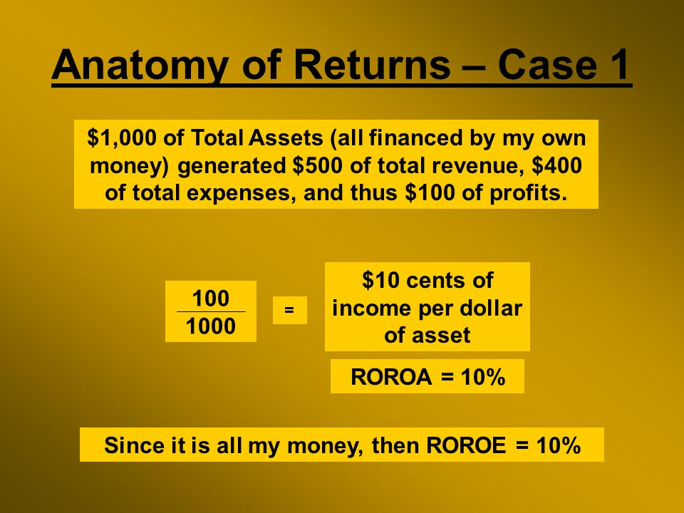 Anatomy of Returns – Case 1 $1,000 of Total Assets (all financed by my own money) generated $500 of total revenue, $400 of total expenses, and thus $100 of profits.