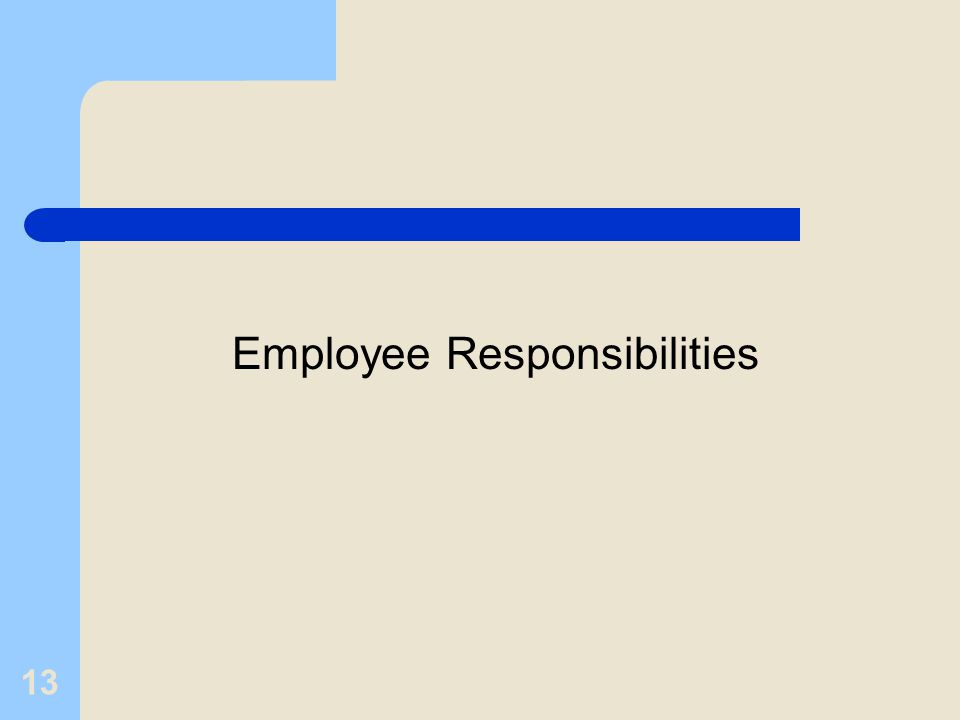 13 Employee Responsibilities