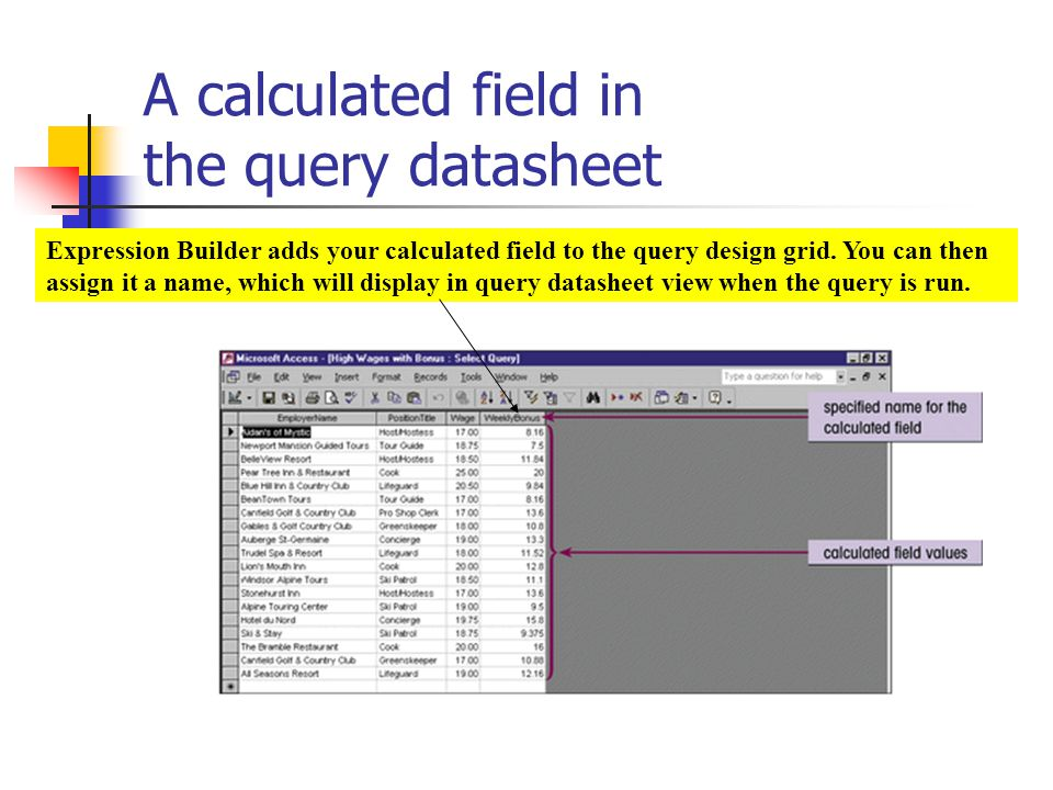 A calculated field in the query datasheet Expression Builder adds your calculated field to the query design grid.
