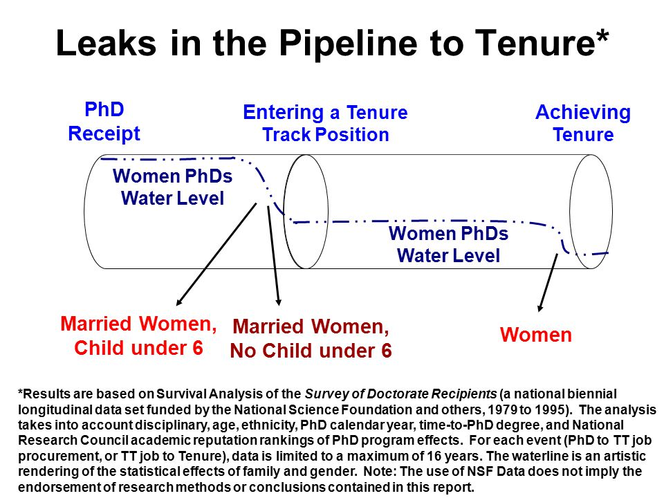Leaks in the Pipeline: PhD to Tenure Track Position For each year after the PhD, Married Men with Children under 6 are 50% more likely to enter a tenure track position than are Married Women with Children under 6 Source: Survey of Doctorate Recipients, Sciences and Humanities, 1981 to 1995.