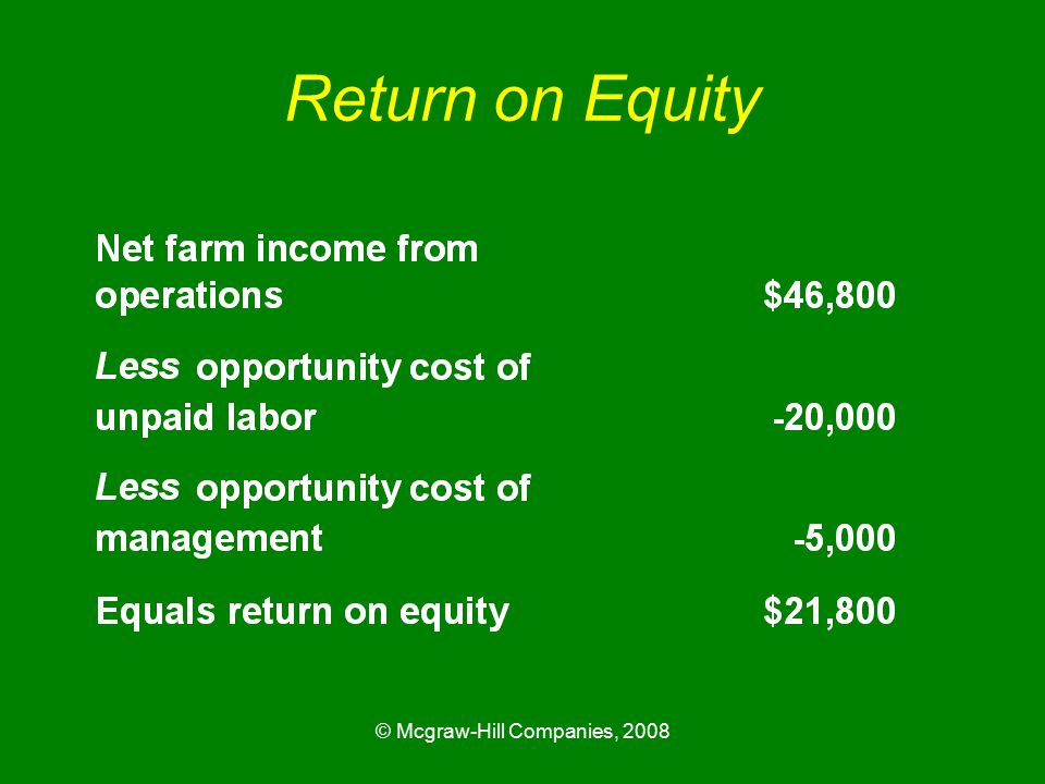 © Mcgraw-Hill Companies, 2008 Return on Equity