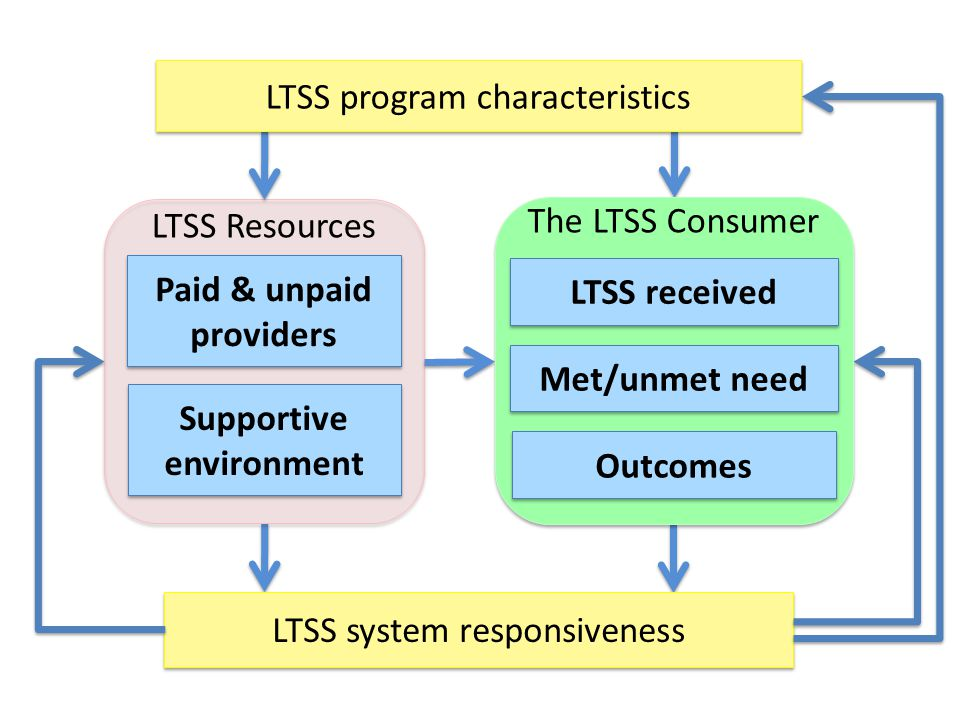 LTSS system responsiveness Paid & unpaid providers Paid & unpaid providers Supportive environment LTSS Resources LTSS received Outcomes The LTSS Consu
