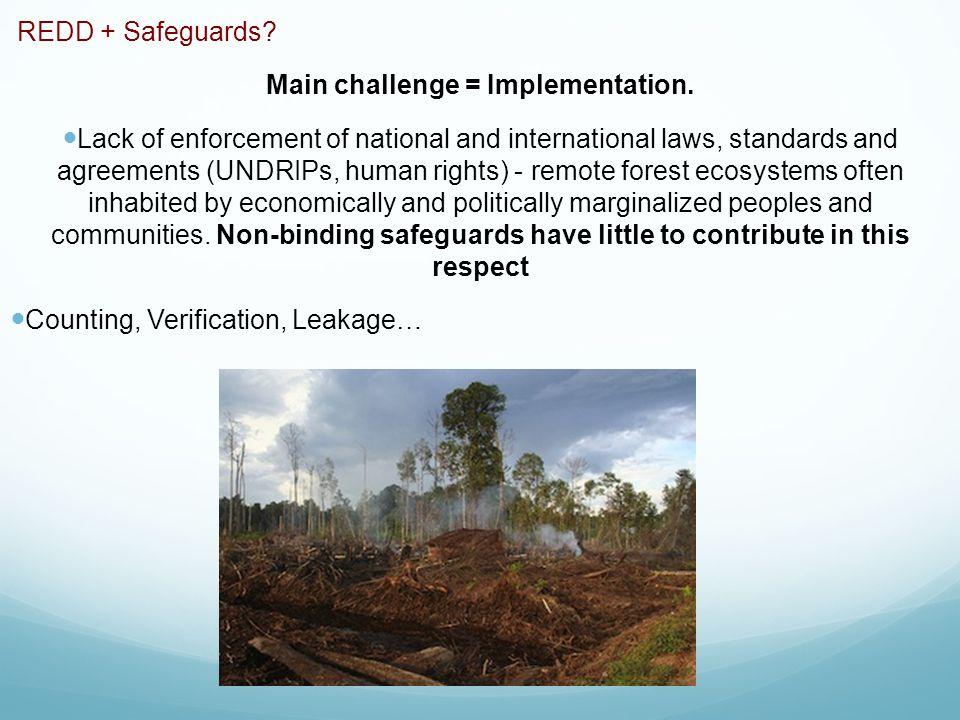 REDD + Safeguards. Main challenge = Implementation.