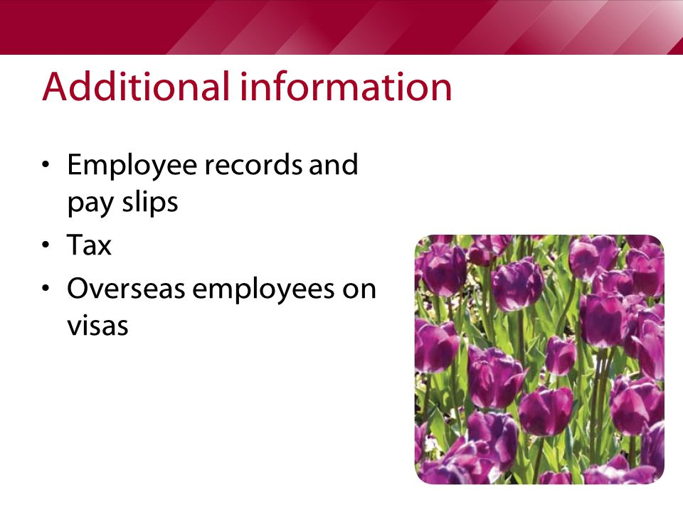 Additional information Employee records and pay slips Tax Overseas employees on visas