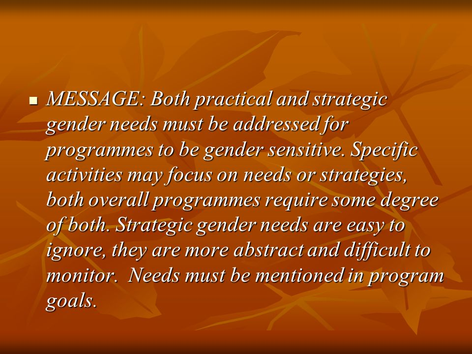 MESSAGE: Both practical and strategic gender needs must be addressed for programmes to be gender sensitive.