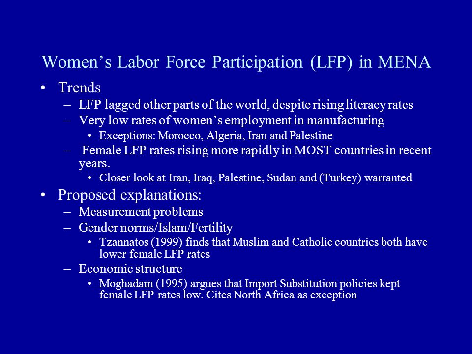 More rigorous cross-country econometric study –Challenges: Consistent measure of female labor force participation Consistent measure of economic openness –Need to distinguish self-imposed isolation from externally imposed Regional study of the post peace process economies of Jordan/Egypt/Palestine/Israel Theoretical exploration of relationship between gender norms and economic conditions –Gender norms can shape economic outcomes –Economic outcomes can (re)shape gender norms Further research continued: