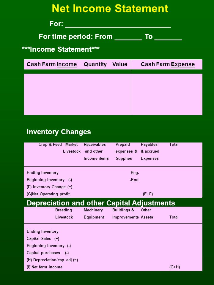 Net Income Statement For: ___________________________ For time period: From _______ To _______ ***Income Statement*** Cash Farm IncomeQuantityValueCash Farm Expense Inventory Changes Crop & Feed MarketReceivables PrepaidPayablesTotal Livestock and other expenses && accrued Income items SuppliesExpenses Ending Inventory Beg.