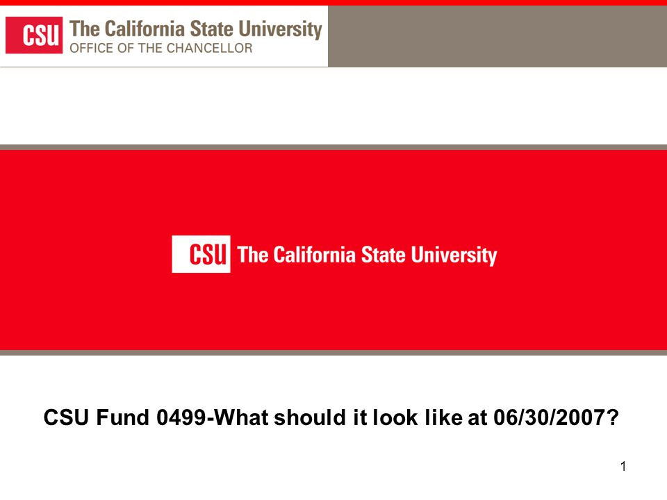 1 CSU Fund 0499-What should it look like at 06/30/2007