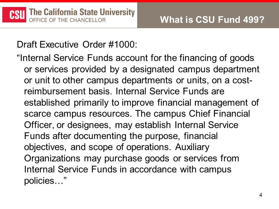 4 What is CSU Fund 499.