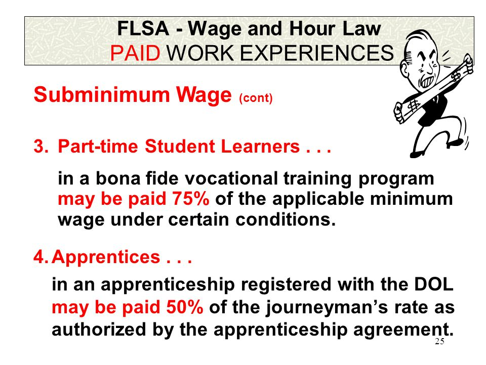 24 FLSA - Wage and Hour Law PAID WORK EXPERIENCES 2.