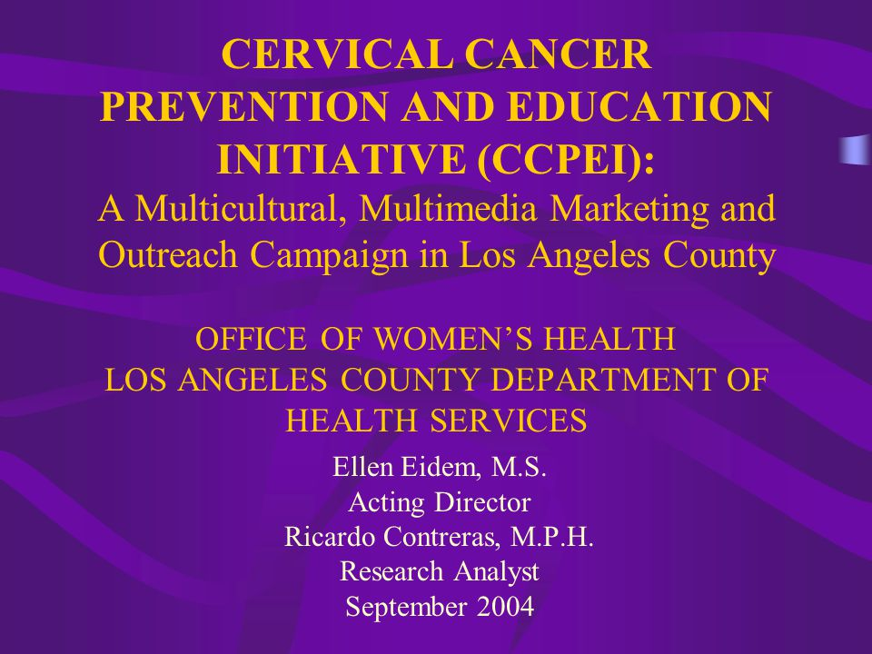 CERVICAL CANCER PREVENTION AND EDUCATION INITIATIVE (CCPEI): A Multicultural, Multimedia Marketing and Outreach Campaign in Los Angeles County OFFICE OF WOMEN'S HEALTH LOS ANGELES COUNTY DEPARTMENT OF HEALTH SERVICES Ellen Eidem, M.S.