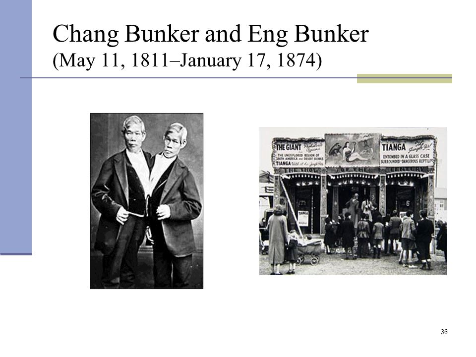 36 Chang Bunker and Eng Bunker (May 11, 1811–January 17, 1874)