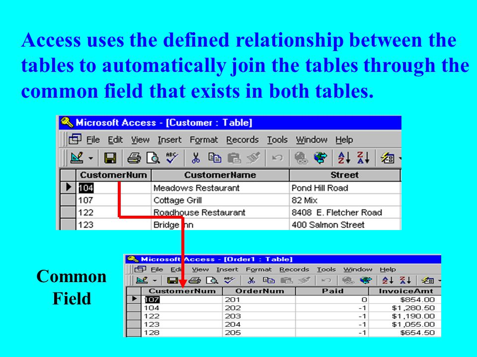 Common Field Access uses the defined relationship between the tables to automatically join the tables through the common field that exists in both tables.