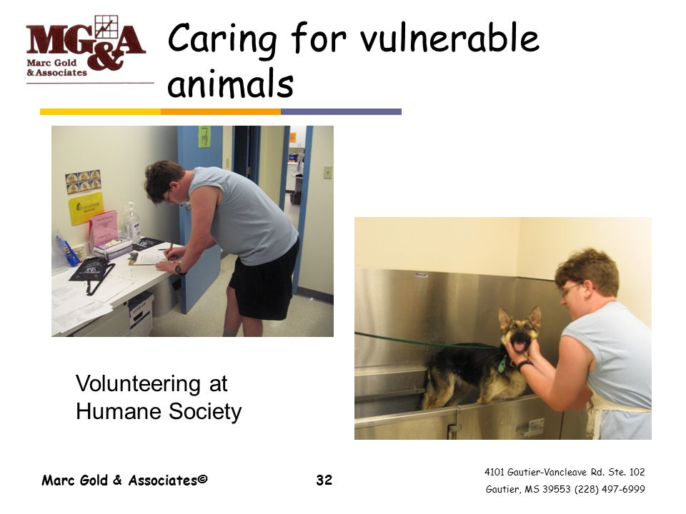 4101 Gautier-Vancleave Rd. Ste. 102 Gautier, MS 39553 (228) 497-6999 Caring for vulnerable animals Marc Gold & Associates©32 Volunteering at Humane So