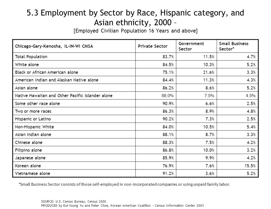 5.3 Employment by Sector by Race, Hispanic category, and Asian ethnicity, 2000 – [Employed Civilian Population 16 Years and above] Chicago-Gary-Kenosha, IL-IN-WI CMSAPrivate Sector Government Sector Small Business Sector* Total Population83.7%11.5%4.7% White alone84.5%10.3%5.2% Black or African American alone75.1%21.6%3.3% American Indian and Alaskan Native alone84.4%11.3%4.3% Asian alone86.2%8.6%5.2% Native Hawaiian and Other Pacific Islander alone 88.0%7.5%4.5% Some other race alone90.9%6.6%2.5% Two or more races86.3%8.9%4.8% Hispanic or Latino90.2%7.3%2.5% Non-Hispanic White84.0%10.5%5.4% Asian Indian alone88.1%8.7%3.3% Chinese alone88.3%7.5%4.2% Filipino alone86.8%10.0%3.2% Japanese alone85.9%9.9%4.2% Korean alone76.9%7.6%15.5% Vietnamese alone91.2%3.6%5.2% SOURCE: U.S.