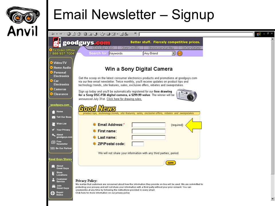 Email Newsletter – Signup