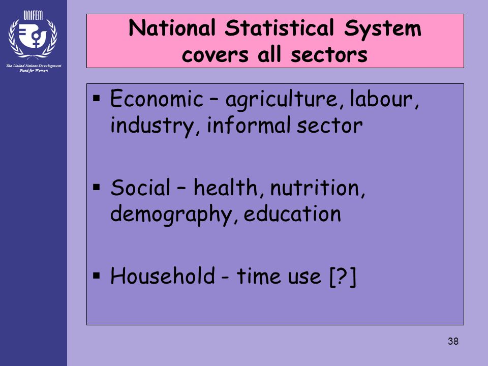 The United Nations Development Fund for Women 38 National Statistical System covers all sectors  Economic – agriculture, labour, industry, informal s