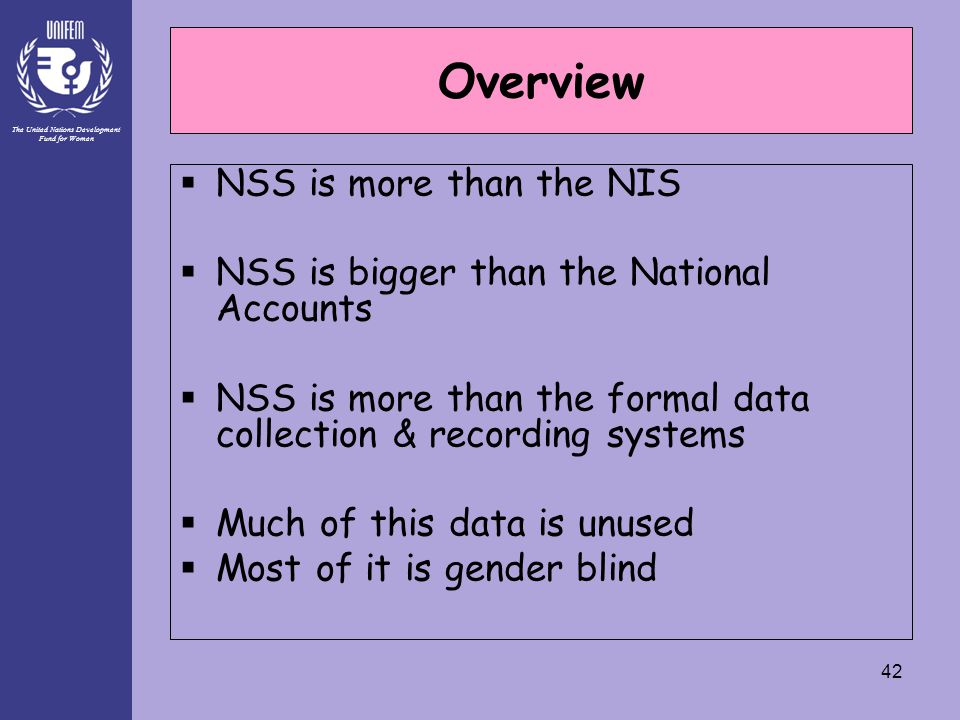 The United Nations Development Fund for Women 42 Overview  NSS is more than the NIS  NSS is bigger than the National Accounts  NSS is more than the