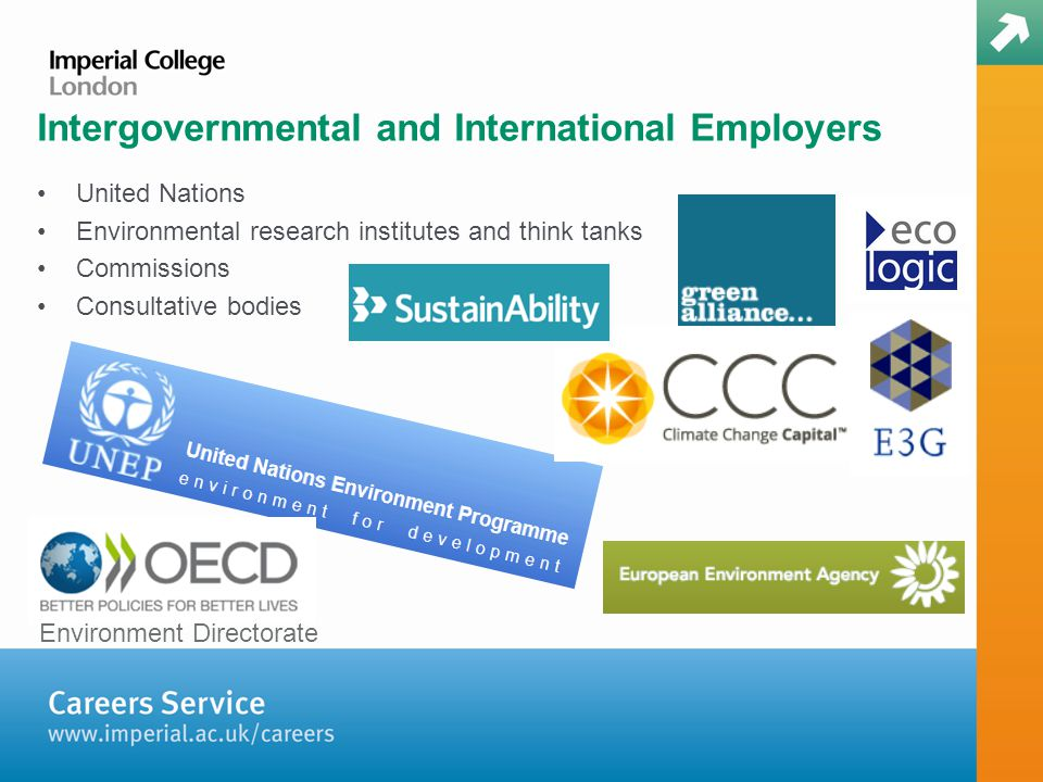 Intergovernmental and International Employers United Nations Environmental research institutes and think tanks Commissions Consultative bodies Environment Directorate
