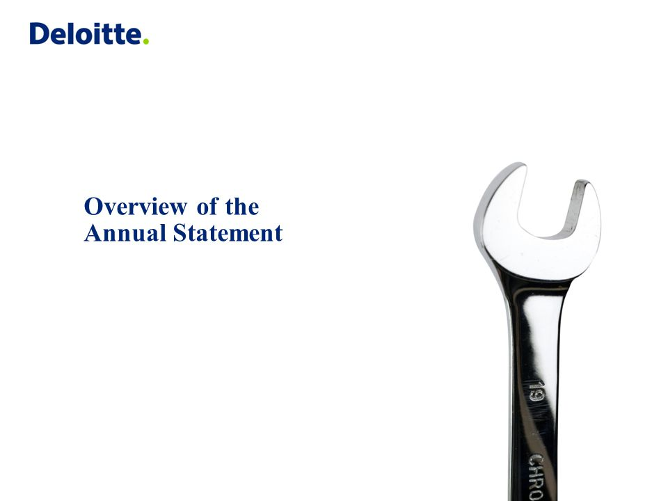 Overview of the Annual Statement