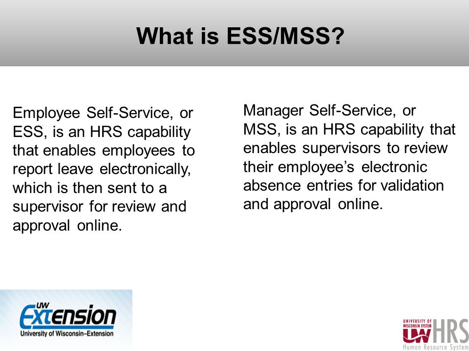 4 What is ESS/MSS.
