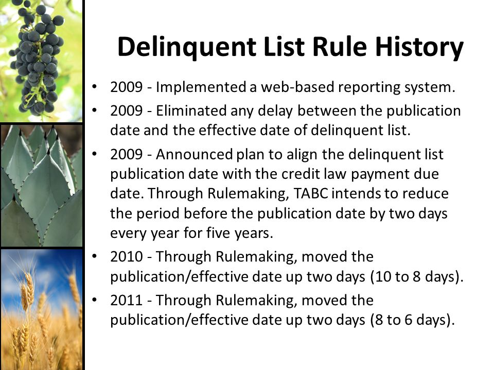 Delinquent List Rule History 2009 - Implemented a web-based reporting system.