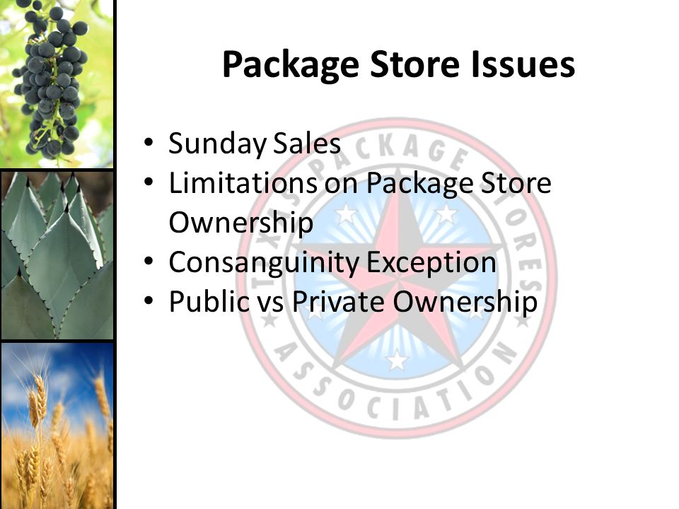 Sunday Sales Limitations on Package Store Ownership Consanguinity Exception Public vs Private Ownership Package Store Issues