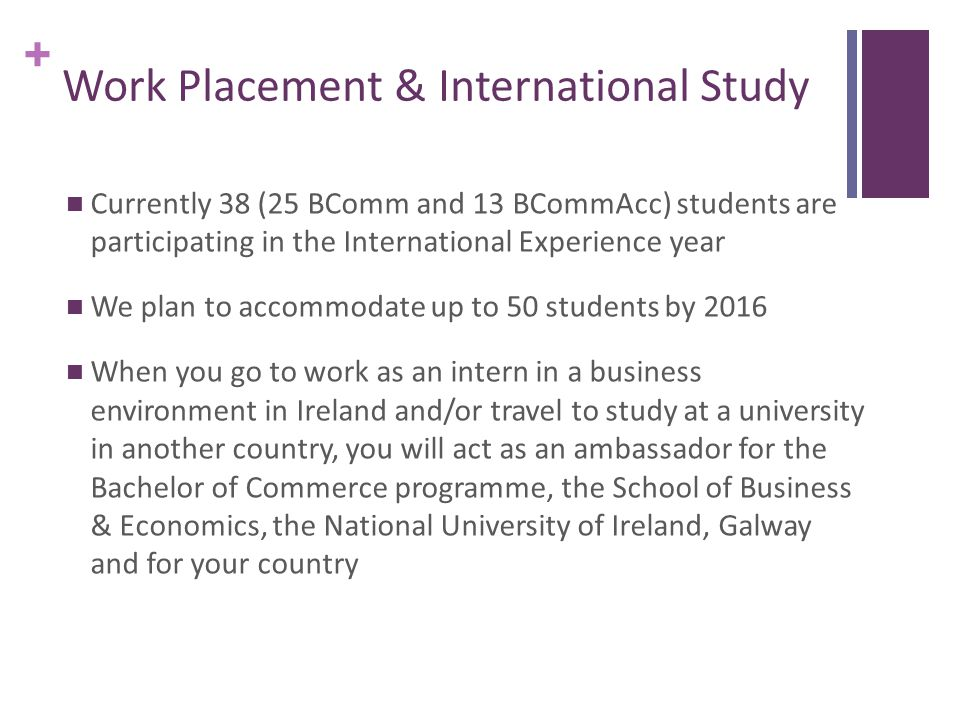 + Placement Opportunities Students apply for a place as an intern in accounting, marketing, human resource management, IT, economics or related area Most internships are paid, but some are unpaid This is an opportunity for you to work in the area that you intend to specialise in your final year and see if you really like this type of work It gives you an opportunity to develop and expand your skills It is a CV building opportunity to differentiate yourself in the competitive graduate market place
