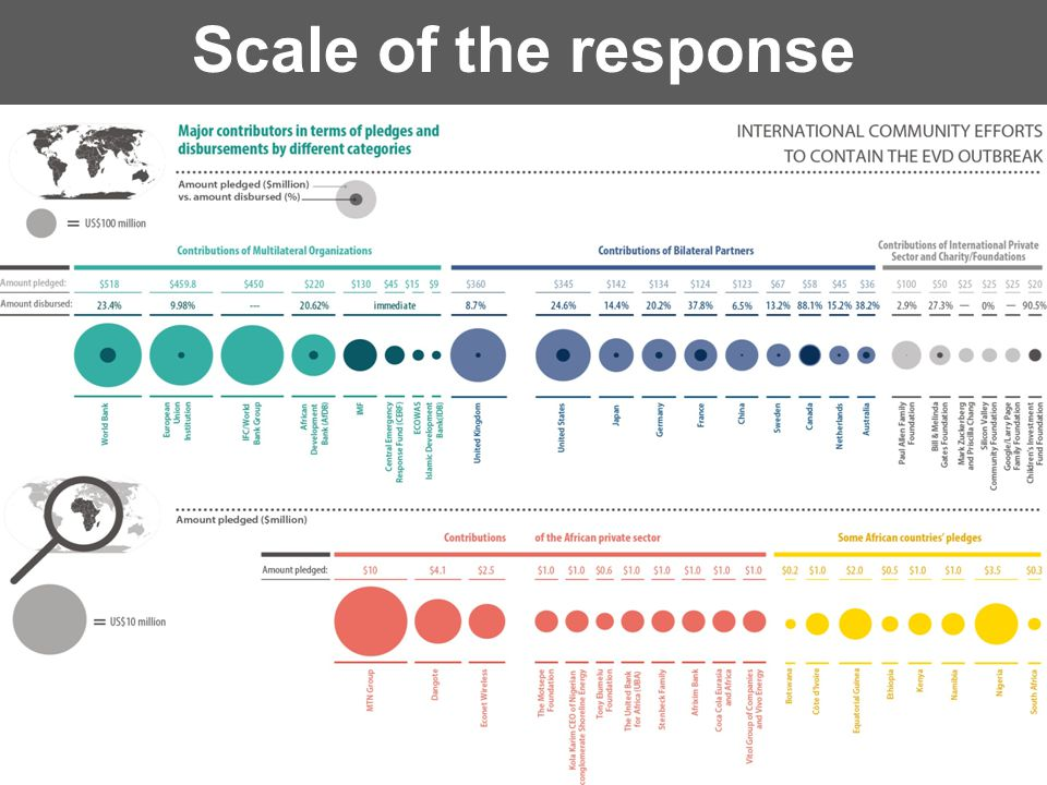 Scale of the response 12