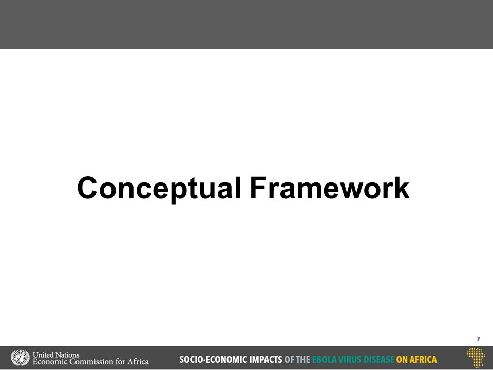 Conceptual Framework 7